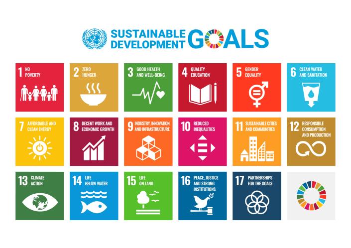 SDG Poster with UN emblem